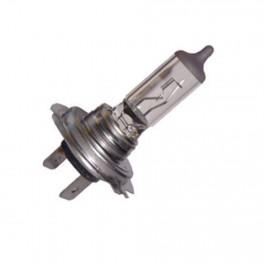 Lampada Alogena 12V 55W Codice H7-1255 confezione da 10 pezzi